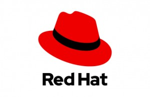 Red Hat Enterprise Linux Workstation, Standard 1 rok